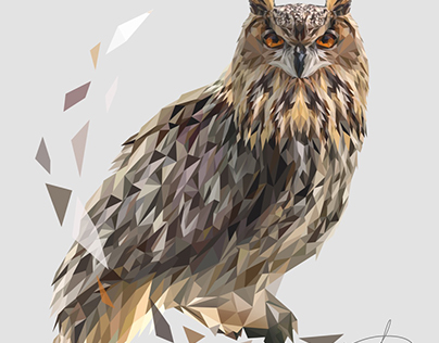 Polygonal owl