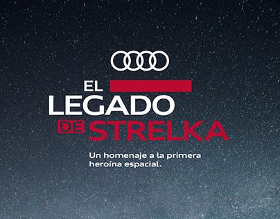 El legado de Strelka / Website development