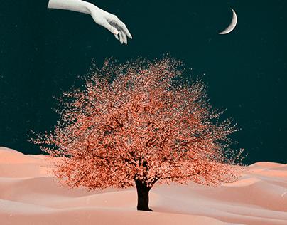 Digital Collage #3