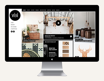 Visi Website