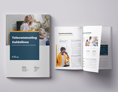 Telecommuting Guidelines