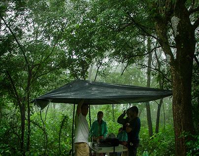 Reserva de San Pablo - T