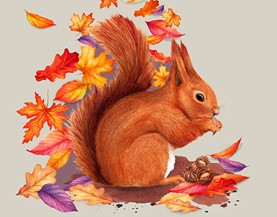 Watercolour Red Squirrel
