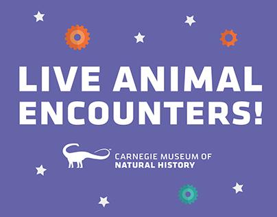 Live Animal Encounters! Branding