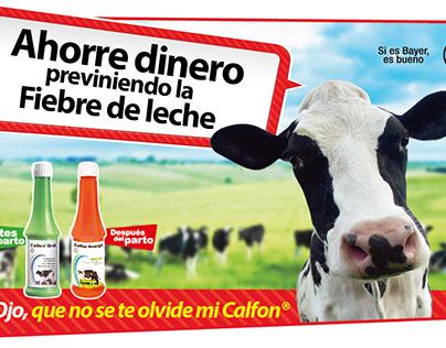 Calfon - Campaña