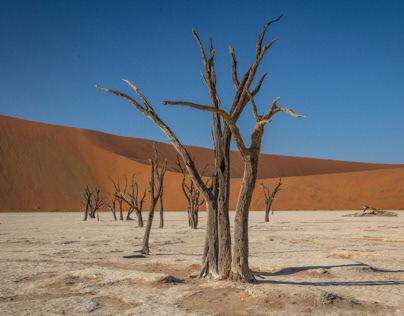In the desert....