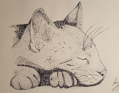Stipple cat