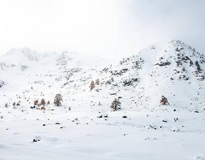 Season : Winter