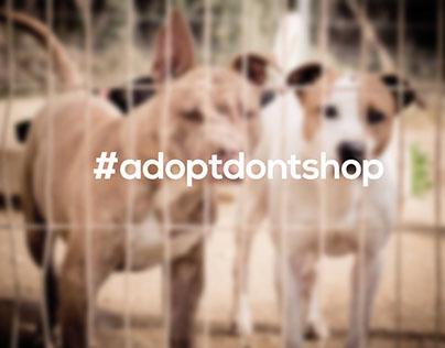 #adoptdontshop video promocional