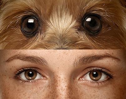 Ele te vê como mãe   Special Dog