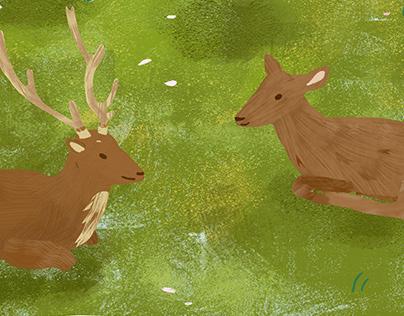 The Deers of Nara