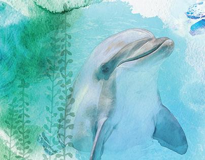 Texas State Aquarium 25th Anniversary Book