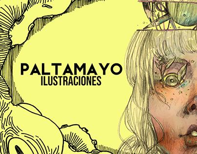 Banner Paltamayo