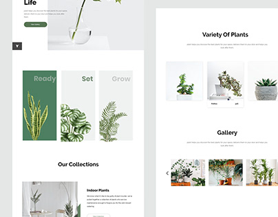 Plants Website Design