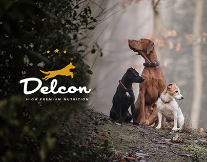 Social Media for Delcon