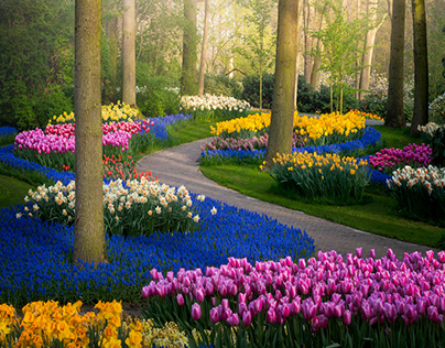 World's Most Beautiful Garden, Without People