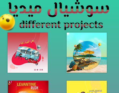 different social media projects