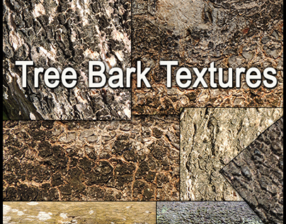 FREE Tree Bark Textures Hi Res Stock Photos Pack