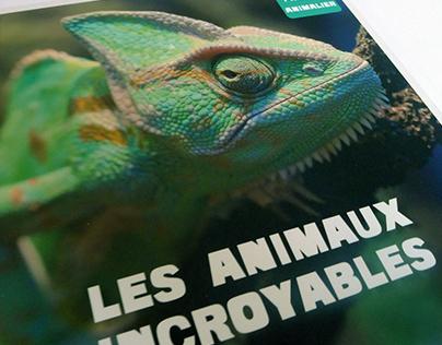 Les Animaux Incroyables - Editions Auzou