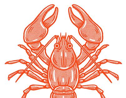 Gentle Rain   Crab Facts