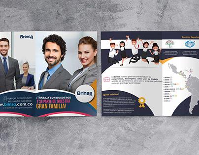 Mailing Cliente Brinsa