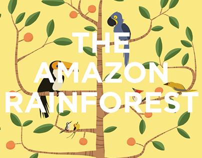 Birds - The Amazon Rainforest