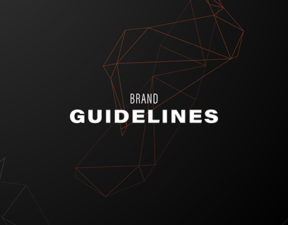 Client Brand Guideline Design