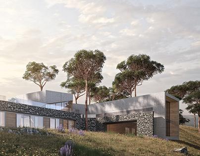 Rock Pine House