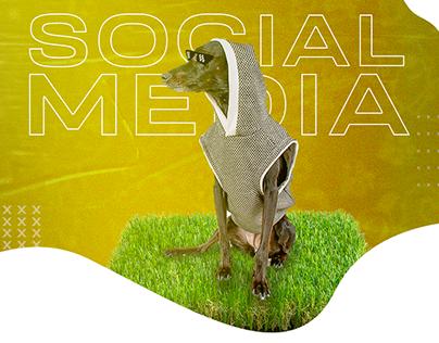 SOCIAL MEDIA - CORAÇÃO CANINO
