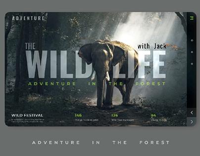 webdesign Adventure