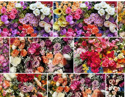 Mix color flower images