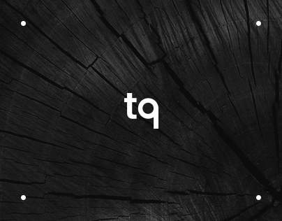 TQ shop website concept