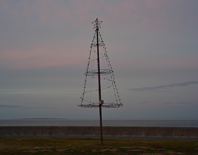 Christmas Tree in Africa
