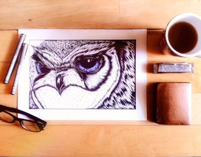owl blue orb