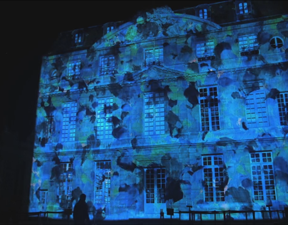 Picasso Video Mapping