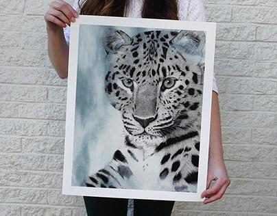 Big Cats Illustrations