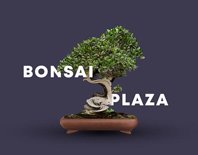 Bonsai Projects Photos Videos Logos Illustrations And Branding On Behance
