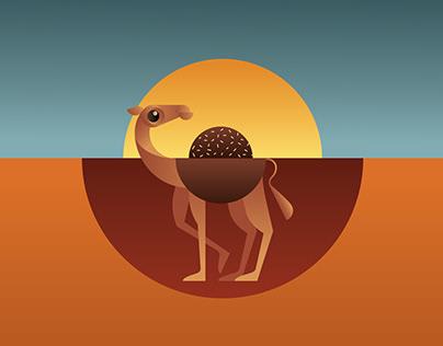 Coco Camel Chocolates