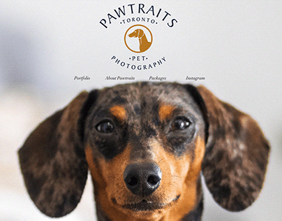 Pawtraits Toronto Pet Photography