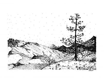 Landscape of Isolation