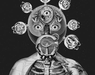 Beyond human body. Creatures