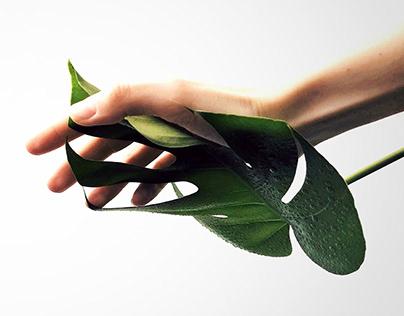GREEN WALL | Domestic hydroponic system