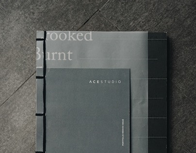 Ace Studio Portfolio Book