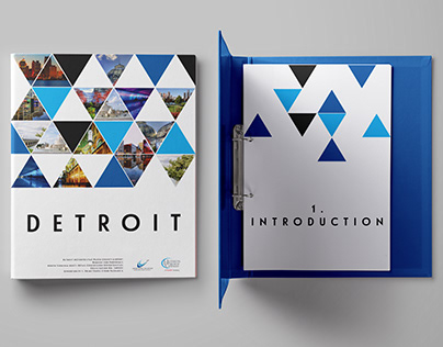 Detroit Request for Proposal