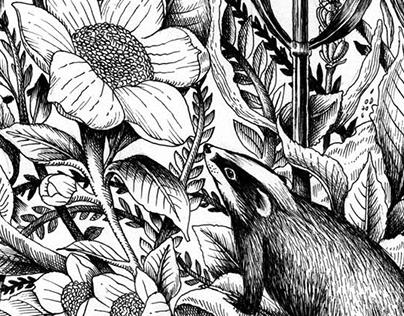 Rishi Tea Landscape drawing