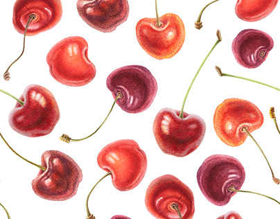 Delicious cherries. Watercolor illustrations