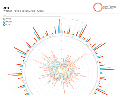 Website & Social Media Data Visualization