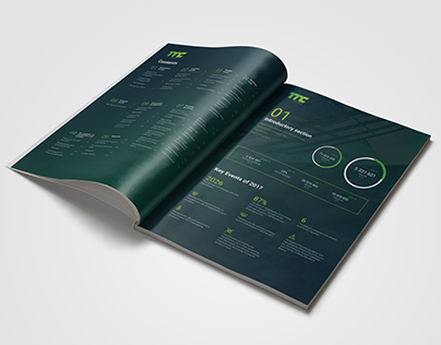 Transtelecom Annual Report — Publishing