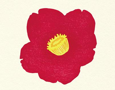 Exhibition-vol.1 Flowers