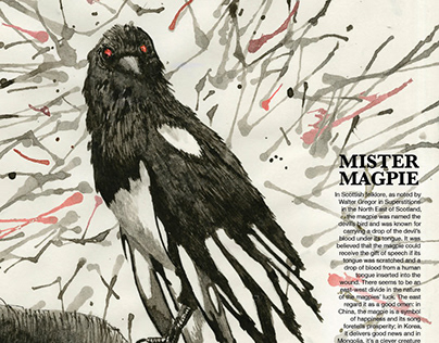 Mister Magpie Poster- 2015 Graphis New Talent Award